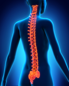 Pasadena spinal injury lawyer