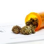 Legal Marijuana Could Be Dangerous